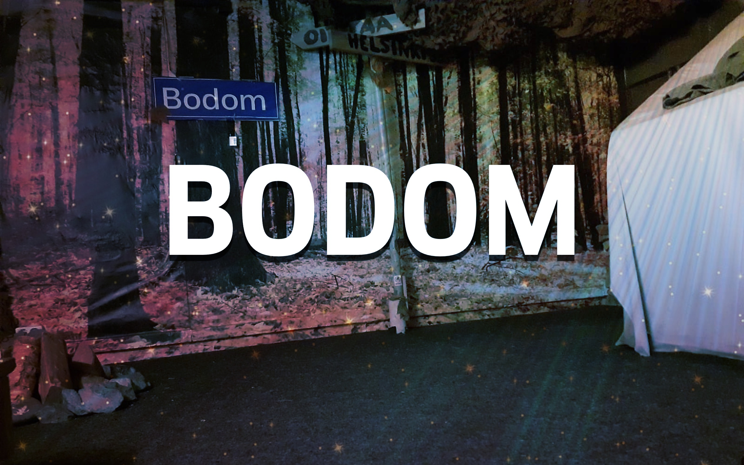 The Murder of Lake Bodom